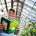 Projeto da Embrapa investiga possível relação entre produtividade da soja e a atuação das abelhas