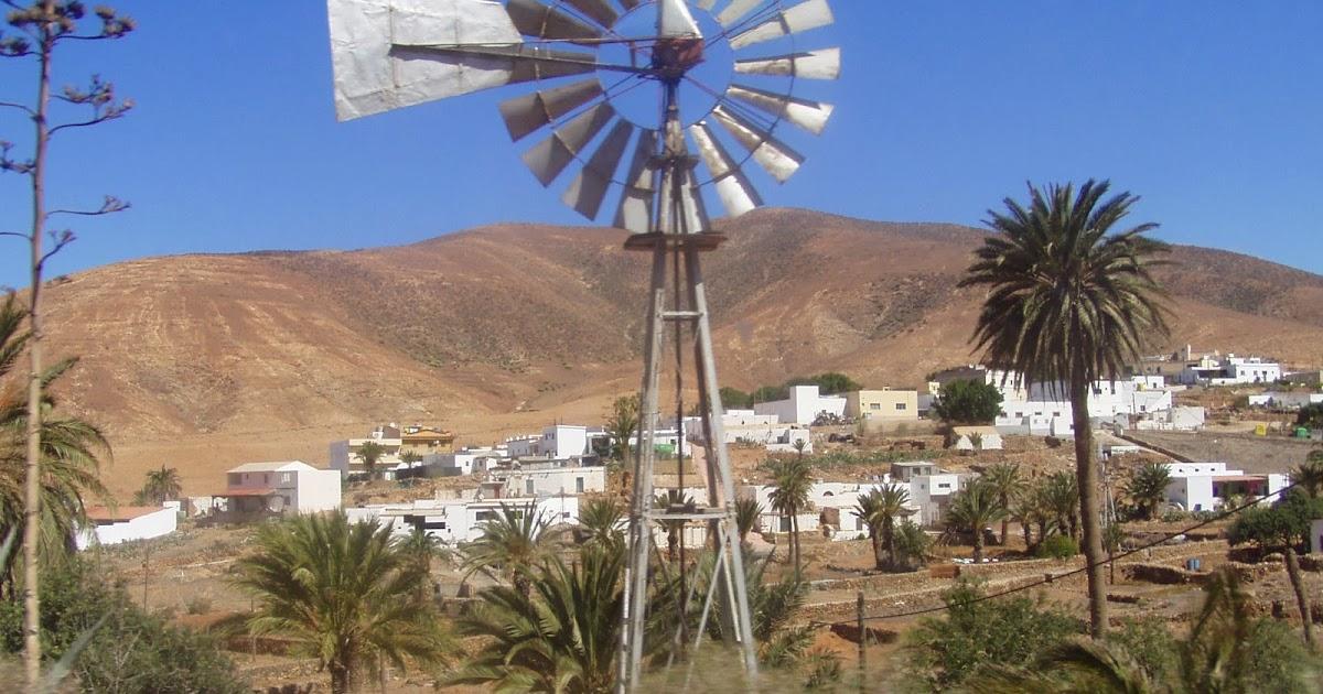 Vivere a Fuerteventura di agricoltura è possibile?