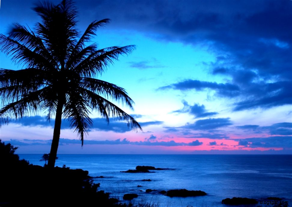 Tropical Island Sunset: Tropical Sunset Wallpaper