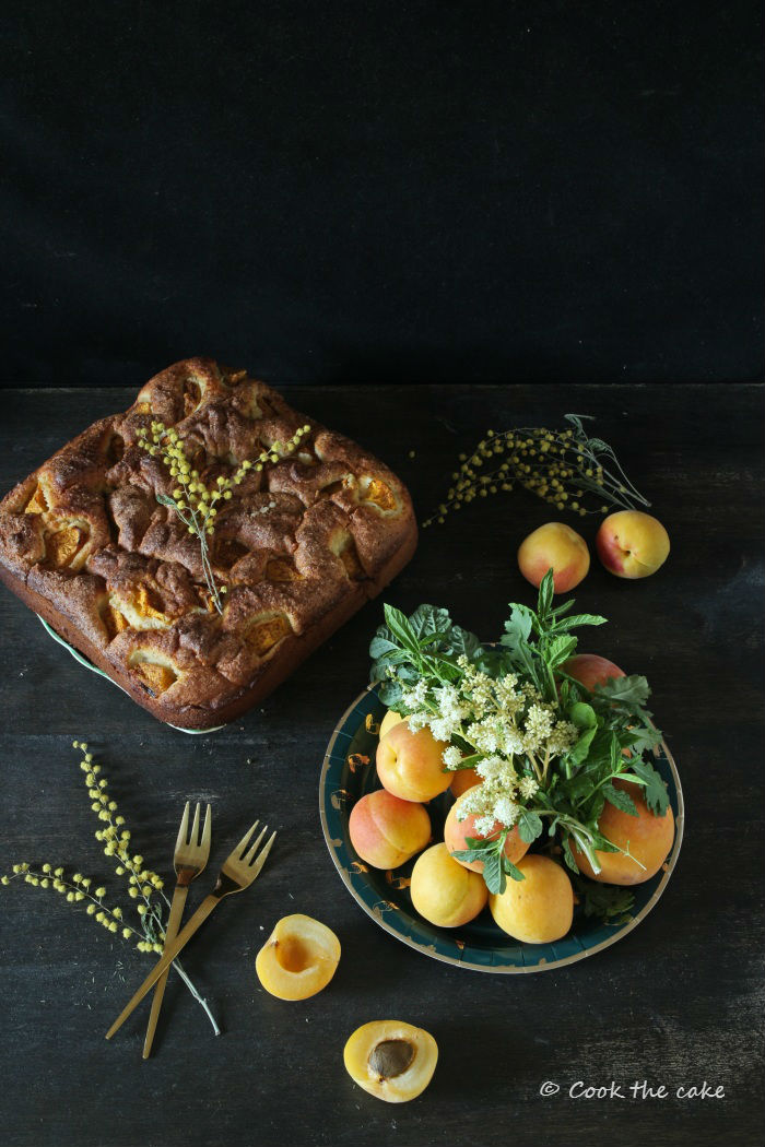 pastel-de-yogur-y-albaricoque, yogur-and-apricot-cake