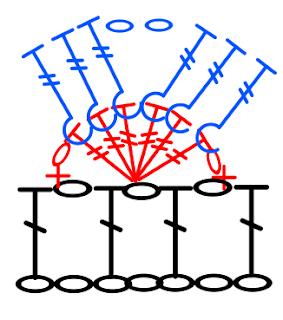 majovel pattern