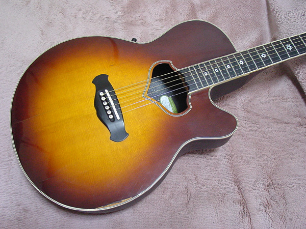 Jagard Gl S together with Barcus Berry Pickup Jack further Tornado Z additionally Kk Pure Bass String Gold moreover Baggs Bronze Pin. on bill lawrence acoustic guitar pick up