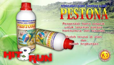 Gambar Pestona Nasa