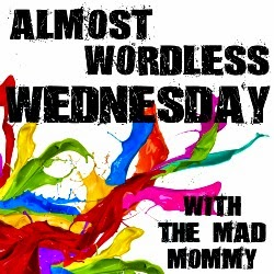 themadmommy.com