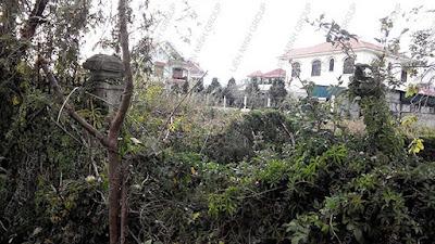 Đất nền biệt thự, nhà vườn giá rẻ phường 8 Đà Lạt
