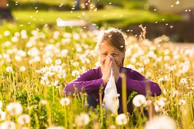 Prevención alergias