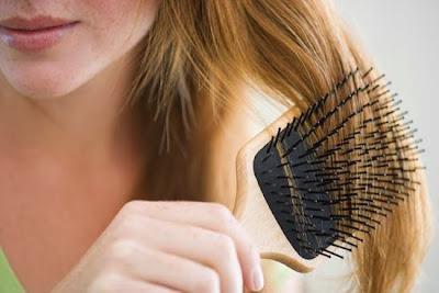 Plantamos cara a la caída del cabello - Blog de Belleza Cosmetica que Si Funciona
