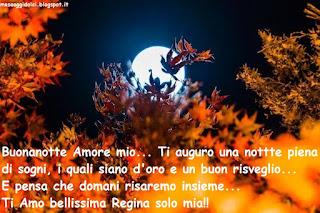 Buonanotte Amore mio... Ti auguro una nottte piena di sogni, i quali siano d'oro e un buon risveglio... E pensa che domani risaremo insieme... Ti Amo bellissima Regina solo mia!!. bülent boz
