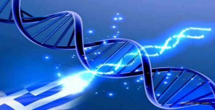 Αποτέλεσμα εικόνας για γονίδιο Έψιλον
