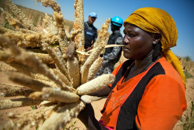 Women can farm the land but land ownership is not for women in Sierra Leone Africa
