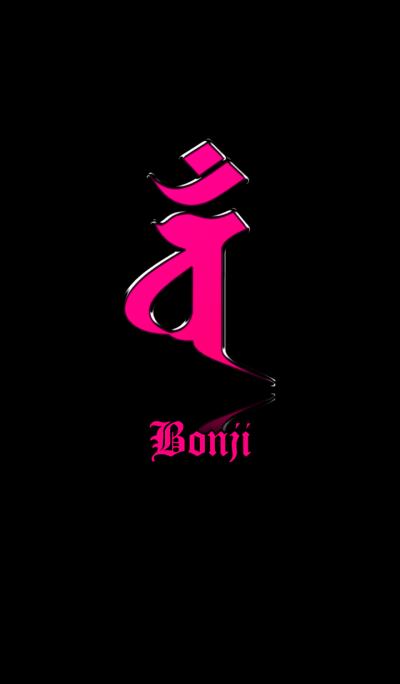 Zodiac Sanskrit [Van] Pink.Black