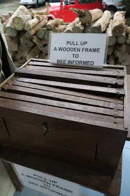 how to raise bees philippines