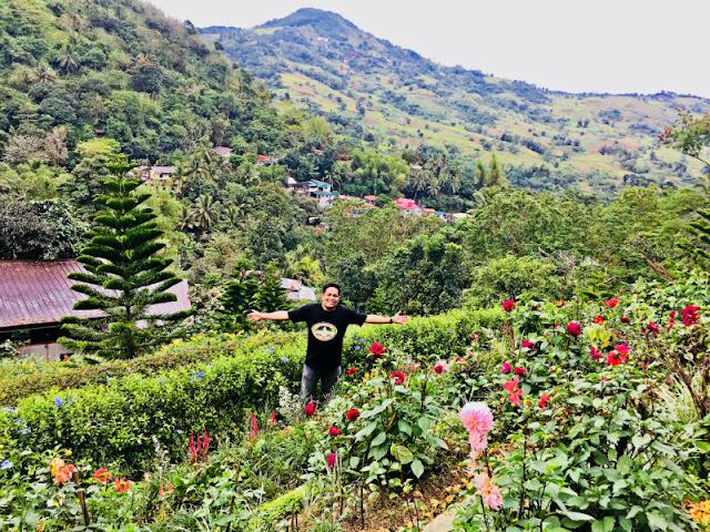 Terrazas de Flores blog