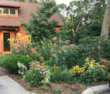 Creating a pollinator-friendly garden