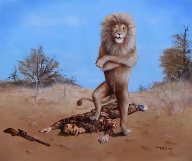 iata ce suferinte au animalele