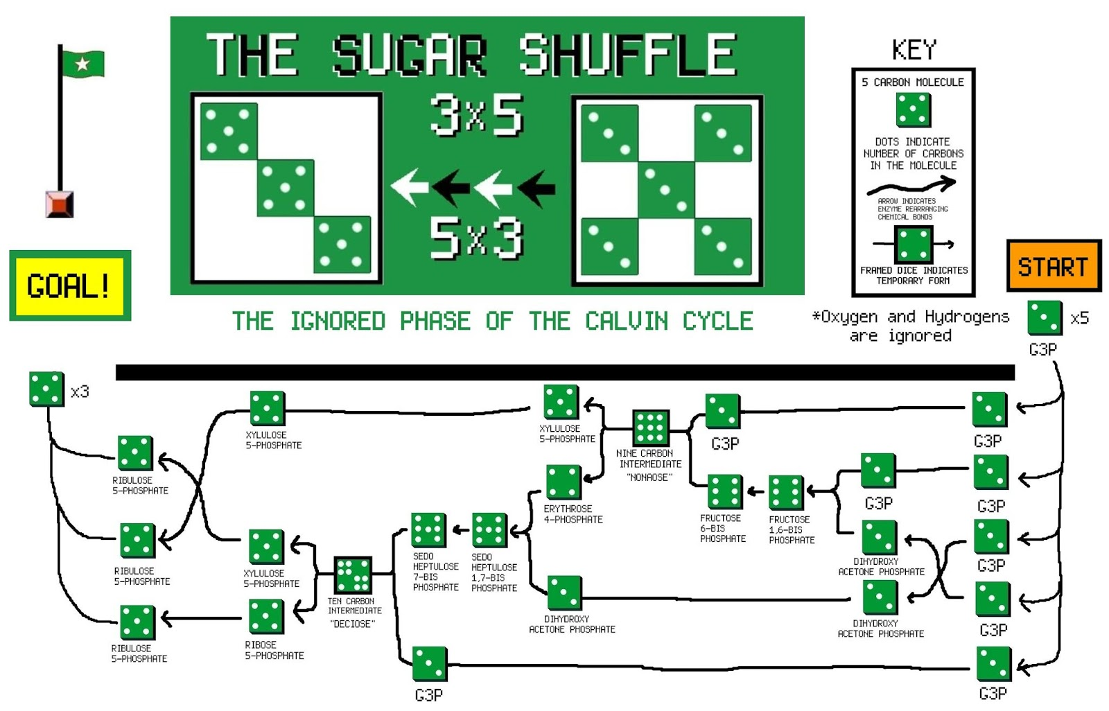 The Voice of Vexillology, Flags & Heraldry: Sugar Shuffle Flag - The