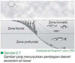 Daerah Limnetik adalah