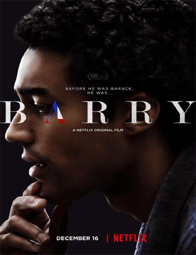 Ver Barry (2016) Online
