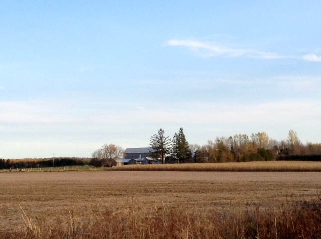 November field along the Osgoode Trail, near Osgoode, Ontario.