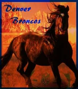 NFL Preview Standings Denver Broncos