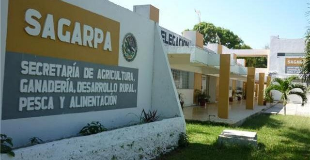 #Sagarpa está en la mira por presuntas operaciones fraudulentas por mil 569 mdp