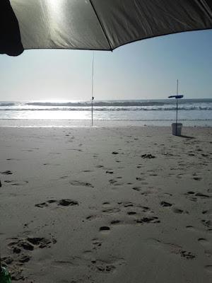 playa+olas+sol