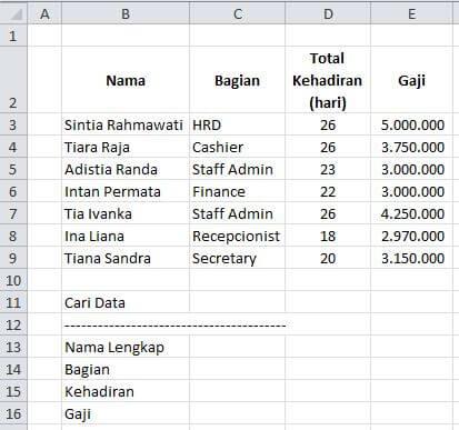 Wildcard dalam Formula Excel