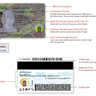 Florida Department of Highway Safety and Motor Vehicles Issues New Driver's License
