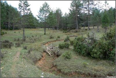 Cauce del Río Escabas en la Cañada Del Mostajo