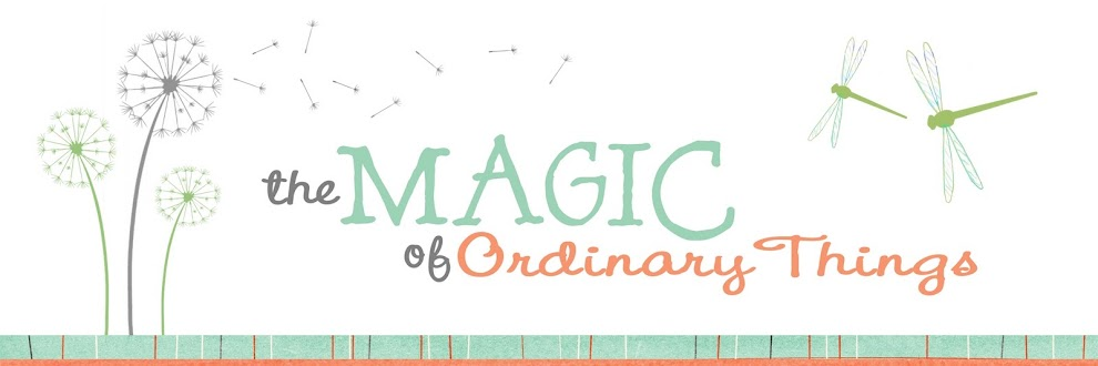 The Magic of Ordinary Things