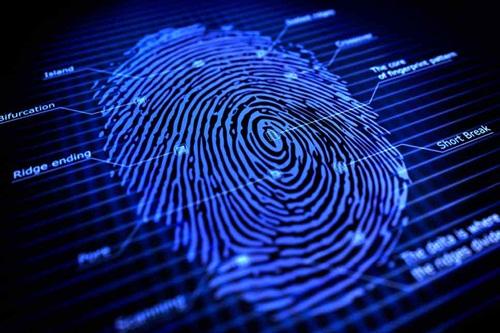 fingerprint untuk laptop dan pc