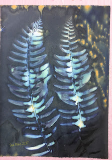 Wet cyanotype, Sue Reno, Image 5