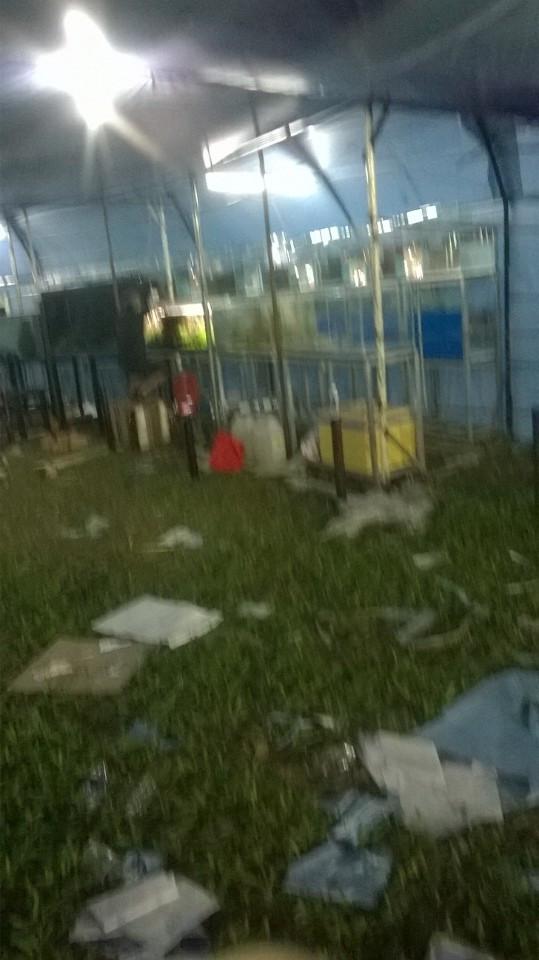 Trưng hồ thủy sinh tại Tao Đàn xuân 2017 - công tác chuẩn bị