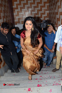 Shatamanam Bhavati Team at Sandhya Theater  0014.JPG