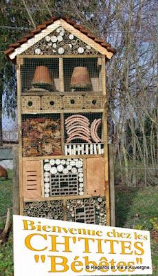 Hôtel à insectes, nature, écologie, diversité, protection, auvergne, abri, hiver, armoire à insectes,