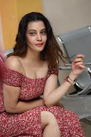 Diksha Panth in a Deep neck Short dress at Maya Mall pre release function ~ Celebrities Exclusive Galleries 127.JPG