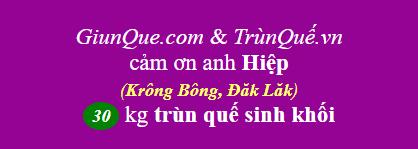 Trùn quế huyện Krông Bông