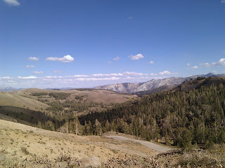 View from a trail near the summit at Sonora Pass, California