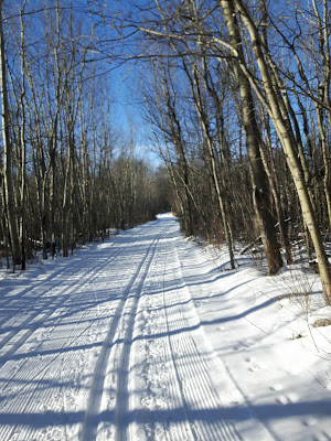 Canadian Birkie Course - Cooking Lake Provincial Park