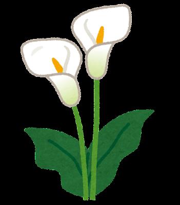 カラーのイラスト(花)