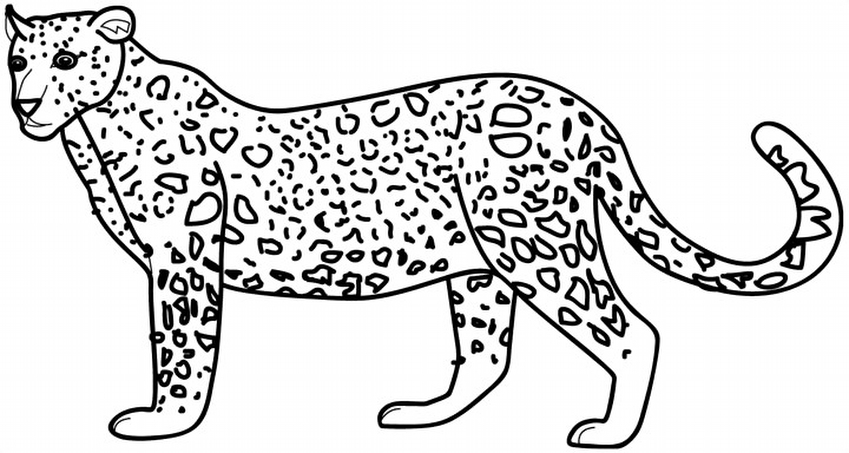 Galeri Siradisi Dostluklar 22 23 Hayvanlar 2pics De