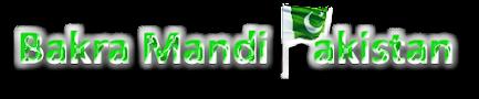 Bakra Mandi Pakistan | Cow Mandi 2016 | Qurbani 2016