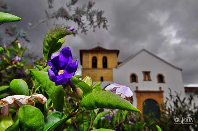 Iglesia de Villa de Leyva entre flores y hojas