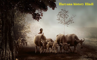 haryana history hindi