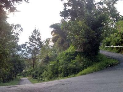 Kamojang, Jalur Alternatif Bandung-Garut