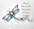 Top 3 at Dragonfly Dreams Challenge Blog