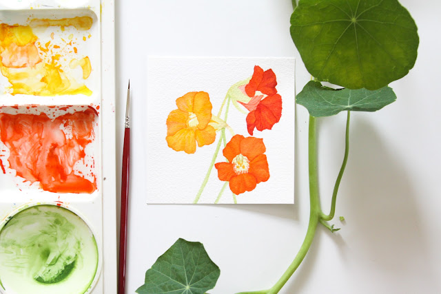 30 paintings in 30 days, watercolor, nasturtiums, Anne Butera, My Giant Strawberry