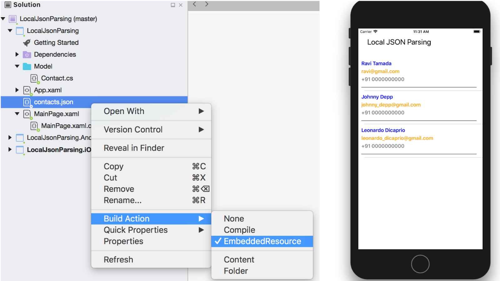How to read local json file and display in Xamarin Forms (C#