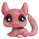 Littlest Pet Shop Pet Pairs Chinchilla (#630) Pet