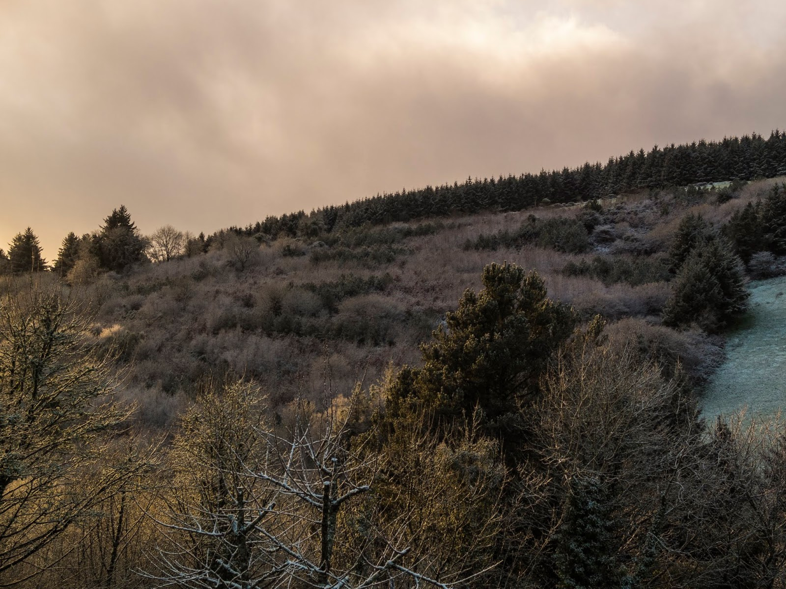 Snowy hillside at sunset captured in the Boggeragh Mountains in North Cork.